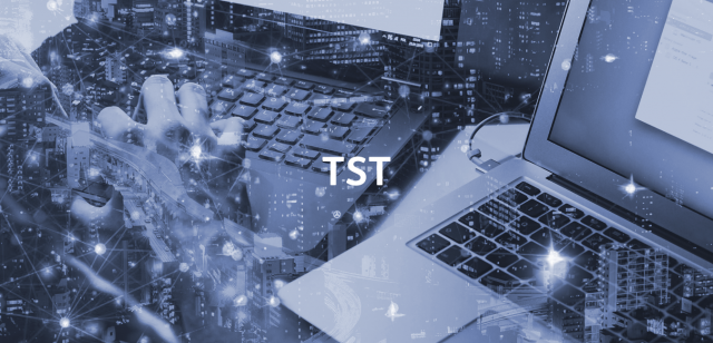 TST Telsy Secure Token